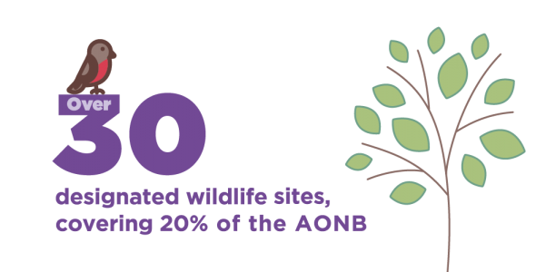 Over 30 designated wildife sites, covering 20% of the AONB.