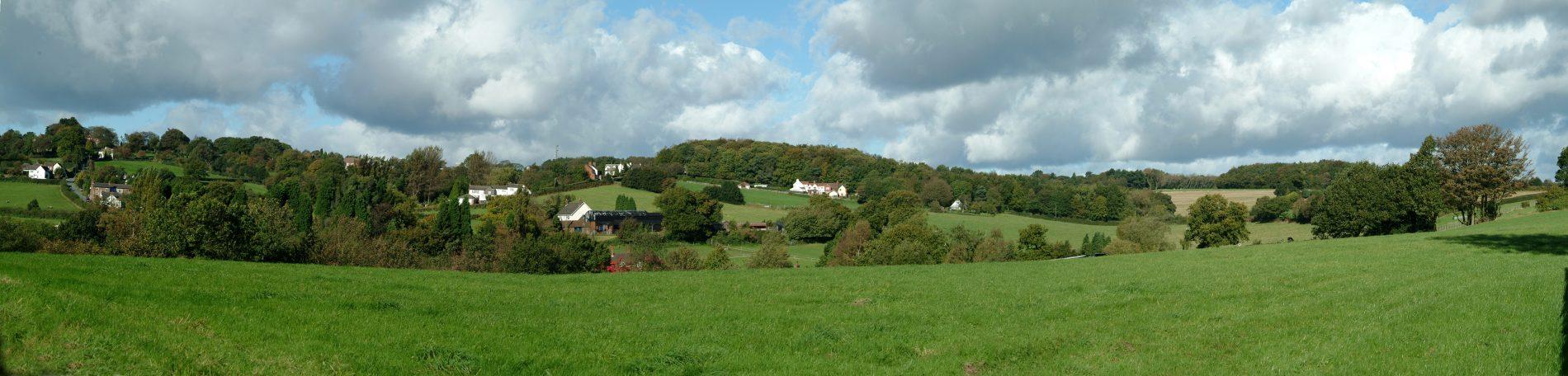 Goosemore Green