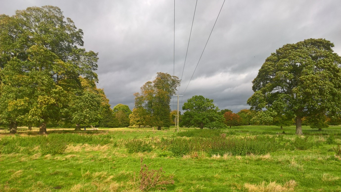 End of the lines at Shugborough Estate